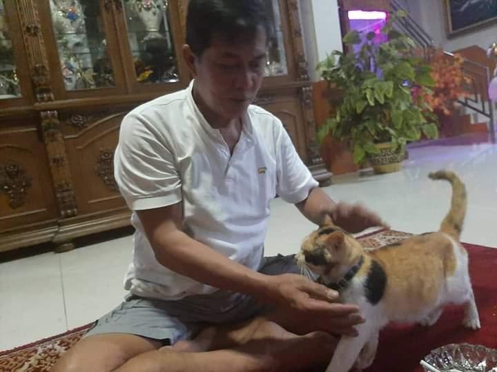Kucing Belang Tiga Kesayangan Walikota Serang Bernama Anwar Bantennews Co Id